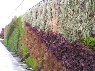 Jardín Vertical en Bilbao Terapia Urbana, Diseño de jardines verticales Jardines de estilo moderno