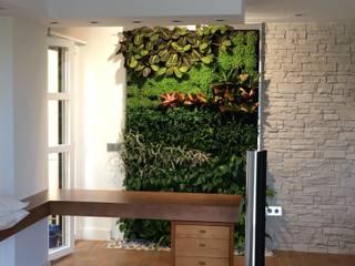 Jardín Vertical en vivienda particular de Sevilla Terapia Urbana, Diseño de jardines verticales Jardines de estilo moderno