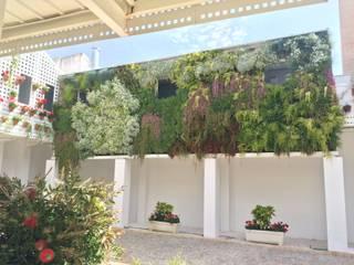 Jardín Vertical en Antiguas Bodega Mora: Jardines de estilo  de Terapia Urbana, Diseño de jardines verticales