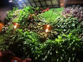 Jardín Vertical en bar Mamarracha Sevilla: Jardines de estilo  de Terapia Urbana, Diseño de jardines verticales