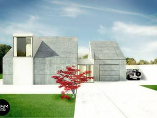 Dom ze skośnym dachem: styl nowoczesne, w kategorii Domy zaprojektowany przez DISM Architekci