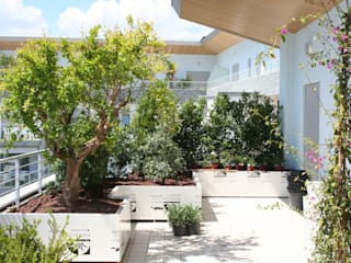 Śródziemnomorski balkon, taras i weranda od Febo Garden landscape designers Śródziemnomorski