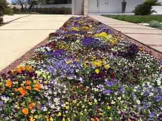 Modern Garden by BB Architettura del Paesaggio Modern