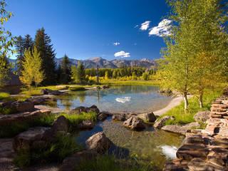 Landscape Pools im Landhausstil von Ecologic City Garden - Paul Marie Creation Landhaus