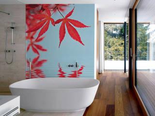 Leaves on Water Modern bathroom by Pixers Modern
