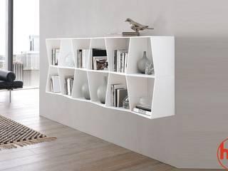 Modern Home Living roomShelves