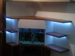 biblioteca - acuario : Pasillos y vestíbulos de estilo  por Modulo