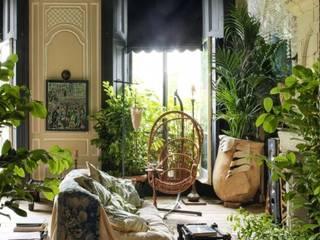 POLLICE VERDE: piante per arredare:  in stile  di VOGLIACASA.IT