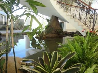 Projeto Lago Chandelier Jardins tropicais por Agua Viva Lagos e Paisagismo Tropical
