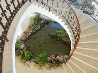Projeto Lago Chandelier: Jardins  por Agua Viva Lagos e Paisagismo,Tropical