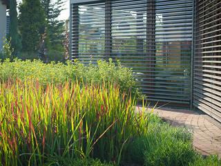Modern conservatory by Pracownia Projektowa Architektury Krajobrazu Januszówka Modern
