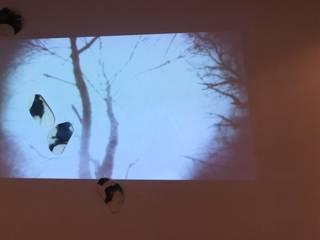 Gallery YORI(Tokyo): Ricca OKANOが手掛けた現代のです。,モダン