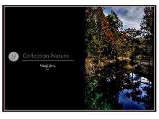 Collection - Nature:  de style  par Atelier 1331
