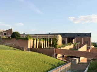Recupero e restauro del sito di archeologia industriale EX FONDERIE BALLARINI (SASSUOLO - MODENA) Architetto Silvia Giacobazzi Case in stile industriale