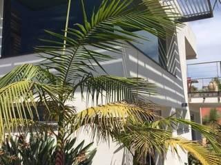 Vue de l'angle en verre: Maisons de style  par Mana Frédéric