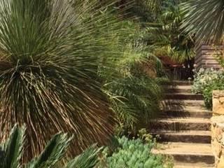 Escalier paysagė: Jardin de style  par Mana Frédéric