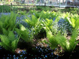 Anfang Mai: Straußenfarn und Vergißmeinicht: rustikaler Garten von Gartenarchitekturbüro Timm