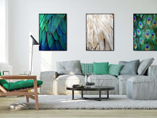 Gorgeous Feathers: eclectic Living room by Pixers