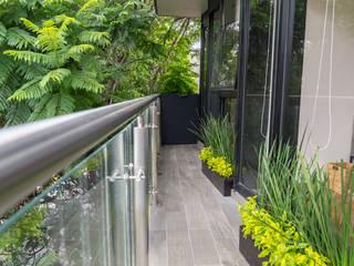 Choapan Decor by Erika Winters®Design Balcones y terrazas modernos de Erika Winters® Design Moderno