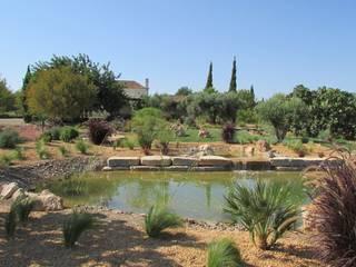 JARDIMGARVE Garden Pond