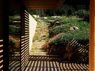 Mit der Wilde Natur den Garten gestallten Rustikaler Garten von Ecologic City Garden - Paul Marie Creation Rustikal