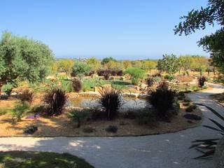 The Lake Garden: Jardins mediterrânicos por JARDIMGARVE