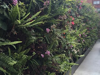 Jardines de estilo moderno de ESPACIO PENSADO S.A.S Moderno
