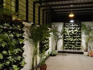 Indoor Landscape Hasta architects 庭院