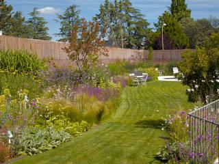 modern Garden by Planta Paisajistas