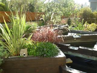 Recuperación de Jardín en terraza.: Terrazas de estilo  de Agrópolis Jardín