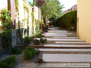 Taller de Paisatge Minimalist style garden
