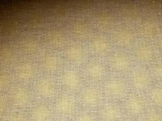 Architects Paper 牆壁與地板地毯