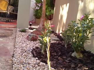modern Garden by Borges Arquitetura & Paisagismo