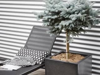 Capi Lux - Planter square Black par Capi Europe Moderne