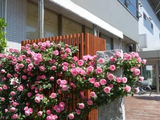空の前庭3: 株式会社 多々良造園が手掛けた庭です。