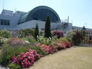 空の前庭1: 株式会社 多々良造園が手掛けた庭です。