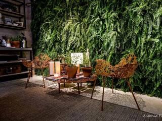 Rafaela Dal'Maso Arquitetura Jardines de estilo moderno