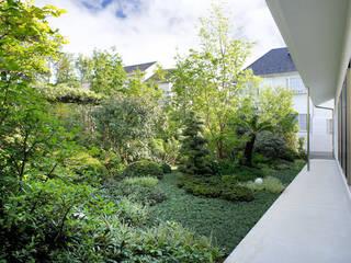 庭と瓦屋根の平屋 モダンな庭 の 株式会社Fit建築設計事務所 モダン