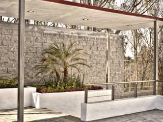JARDINERA DE ACCESO Jardines de estilo minimalista de homify Minimalista Arenisca