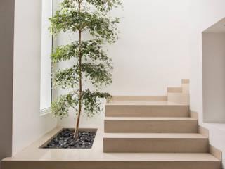 Casa LH: Pasillos y recibidores de estilo  por IX2 arquitectura