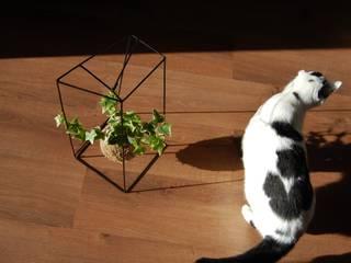 par fiu jardins, lda. Moderne