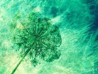 """Leinwand """" Green Touch of Spring"""" 90 x 60 cm von www.momentaufnehmer.de Skandinavisch"""