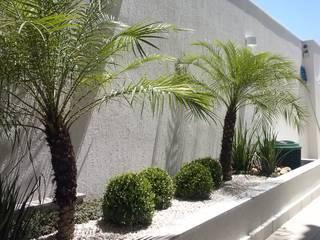 Tropical Contemporâneo Jardins tropicais por Mateus Motta Paisagismo Tropical