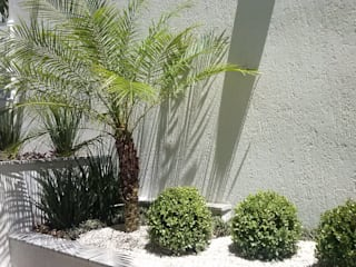 Tropischer Garten von Mateus Motta Paisagismo Tropisch