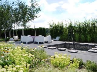 Modern Bahçe MUGO OGRODY Modern