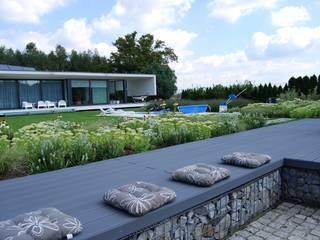MUGO OGRODY Jardines de estilo moderno
