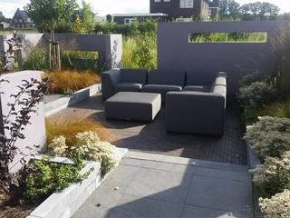 Jardines de estilo  por Bladgoud-tuinen, Moderno