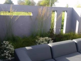 Terrazas de estilo  por Bladgoud-tuinen, Moderno