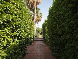 Garten von studioSAL_14, Modern