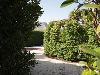 モダンな庭 の studioSAL_14 モダン